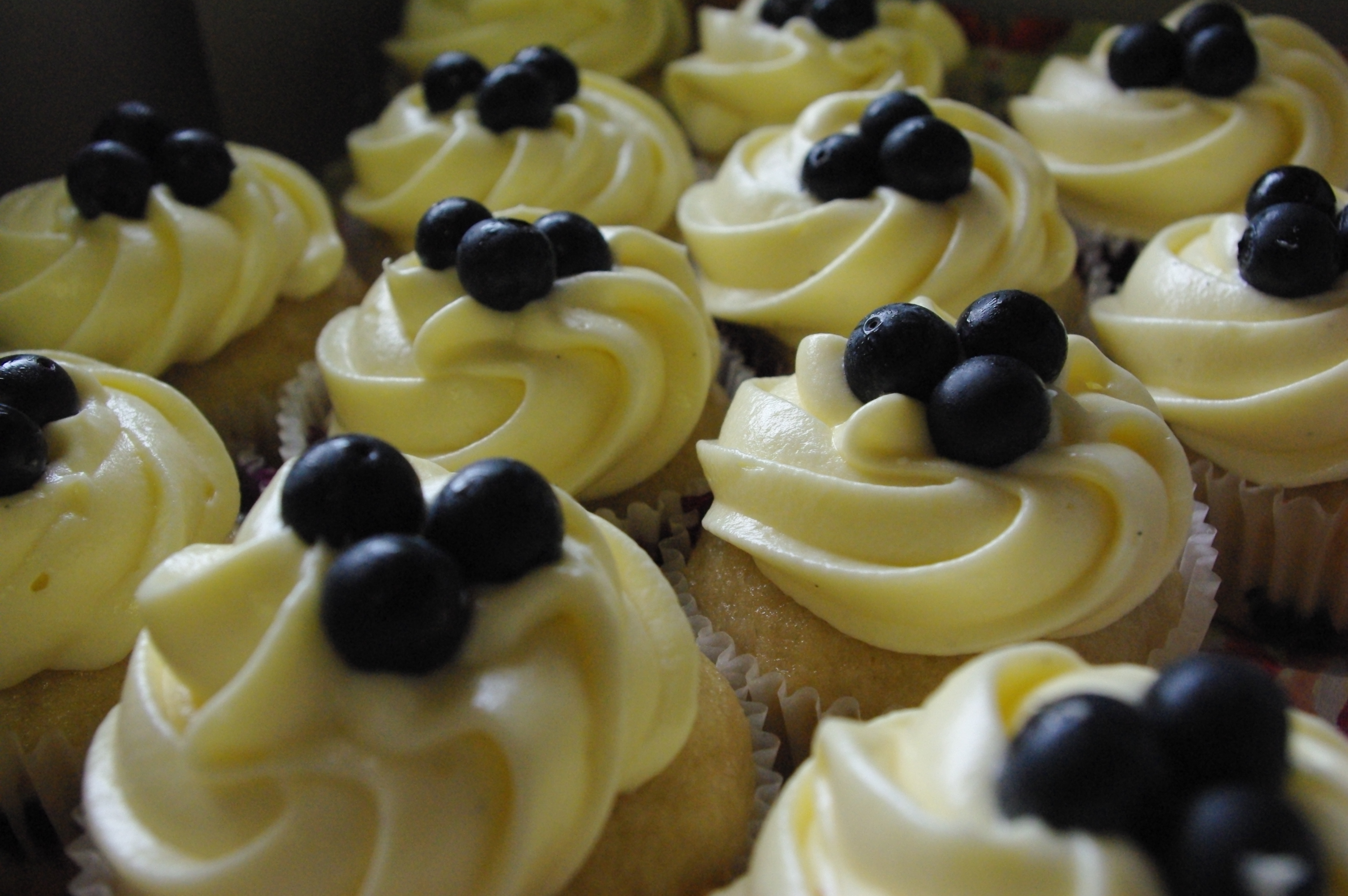 blueberry cupcakes and cream cheese icing